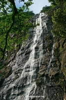 20080726_1172a_BachMa_waterfall_bottom_w