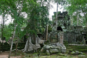 20080812_1373a_Angkor_TaProhm_01_w
