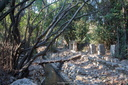 20130924_479_LycianWay_Olympos