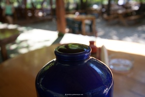 20130924_497_LycianWay_Olympos